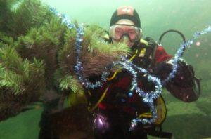 Jon Baker decorating underwater Christmas tree